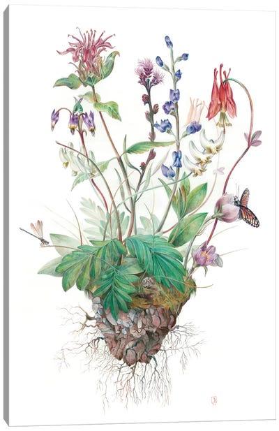 Wildflowers Canvas Print #KEE14