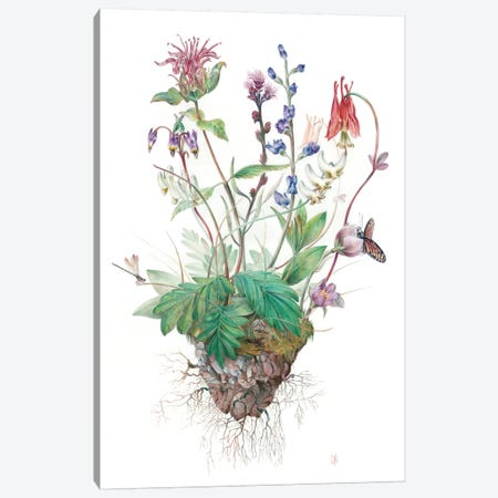 Wildflowers Canvas Print #KEE14} by Brandon Keehner Canvas Print