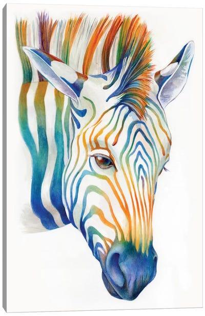 Zebra Canvas Print #KEE15