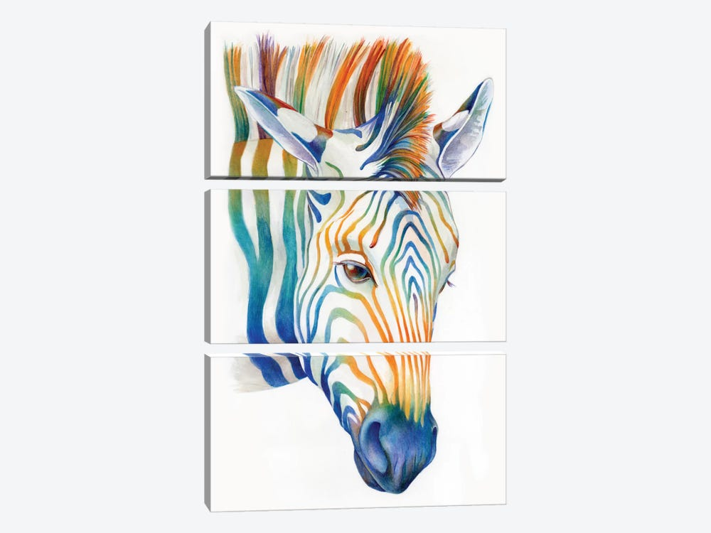 Zebra by Brandon Keehner 3-piece Canvas Artwork