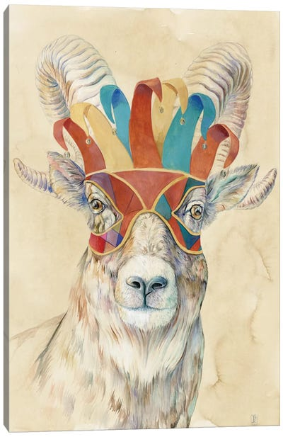 Masquerading Bighorn Sheep Canvas Art Print
