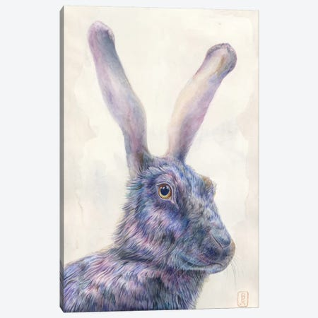 Black Rabbit Canvas Print #KEE3} by Brandon Keehner Canvas Artwork