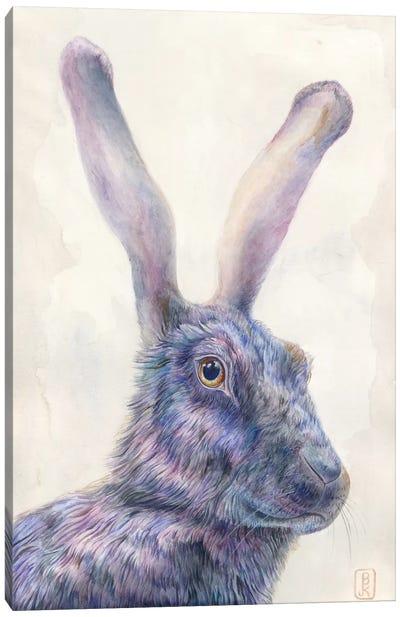 Black Rabbit Canvas Print #KEE3