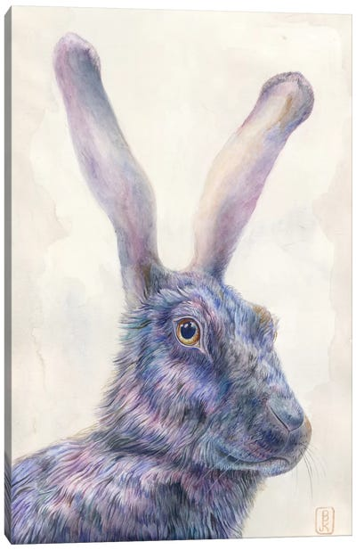 Black Rabbit Canvas Art Print