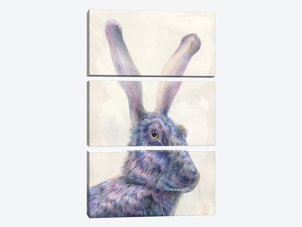 Black Rabbit by Brandon Keehner 3-piece Canvas Artwork