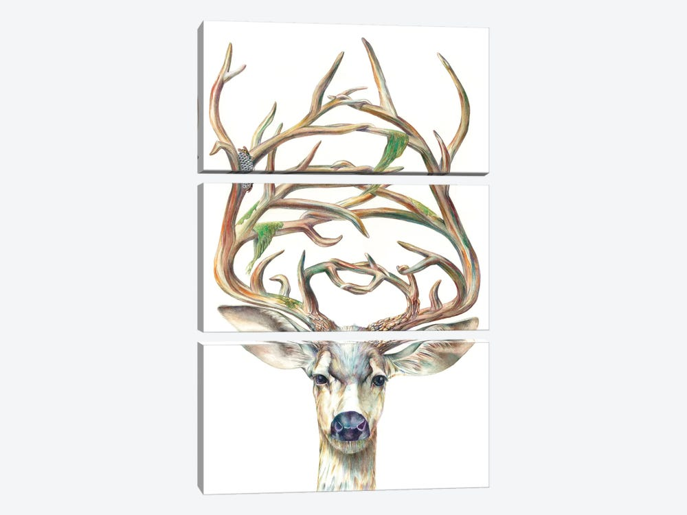Mule Deer Buck by Brandon Keehner 3-piece Art Print