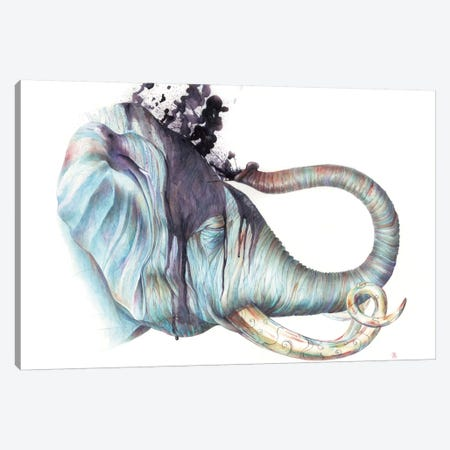 Elephant Shower Canvas Print #KEE8} by Brandon Keehner Canvas Art