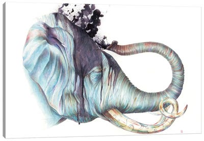 Elephant Shower Canvas Print #KEE8
