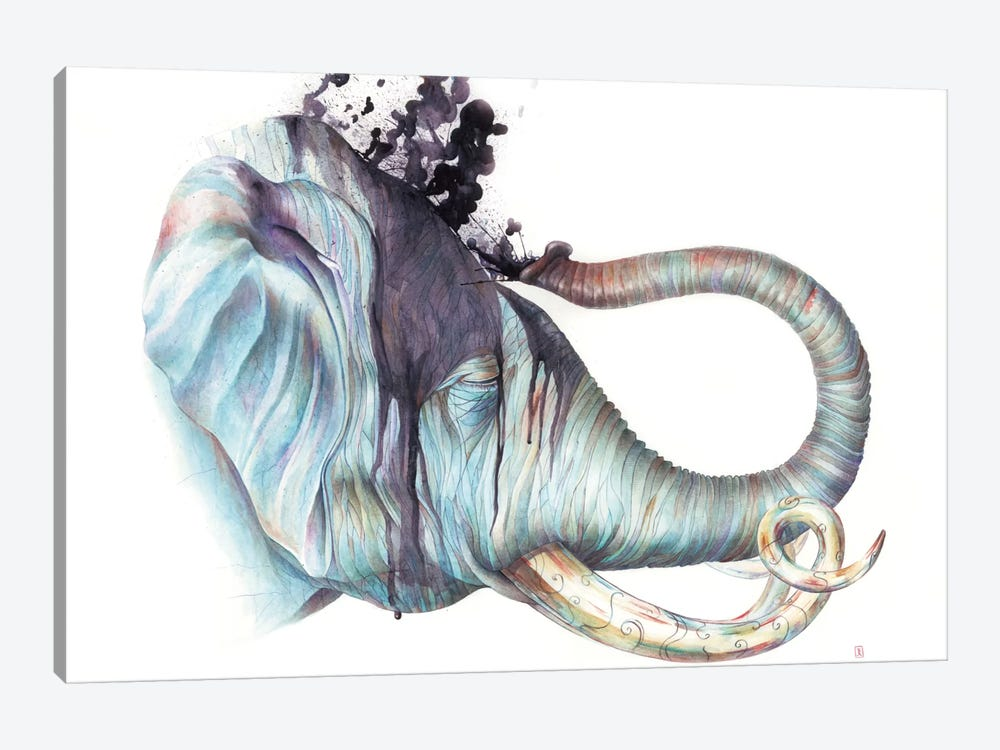 Elephant Shower by Brandon Keehner 1-piece Canvas Print