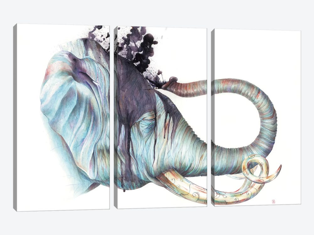 Elephant Shower by Brandon Keehner 3-piece Canvas Print