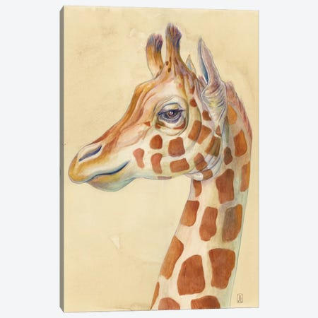 Giraffe Profile Canvas Print #KEE9} by Brandon Keehner Canvas Artwork