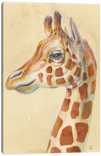 Giraffe Profile Canvas Art Print