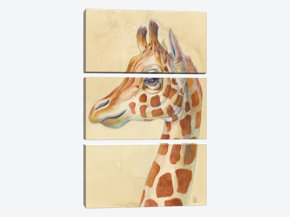 Giraffe Profile by Brandon Keehner 3-piece Canvas Wall Art