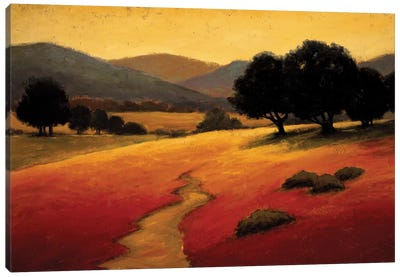 Santa Ynez I Canvas Art Print