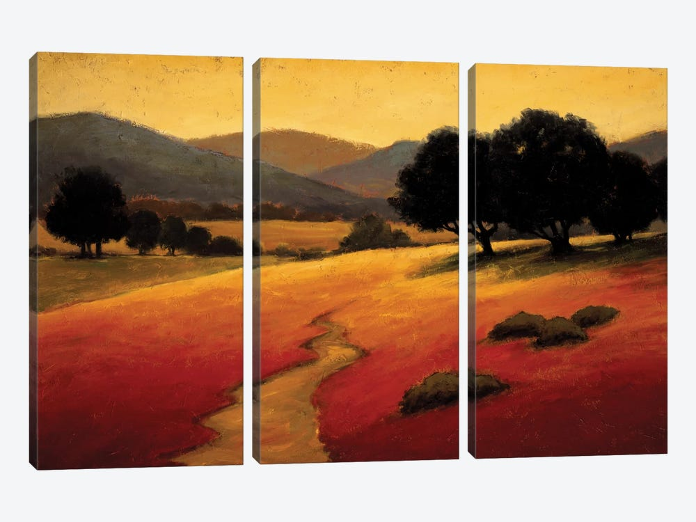 Santa Ynez I by Kevin Harris 3-piece Canvas Art Print