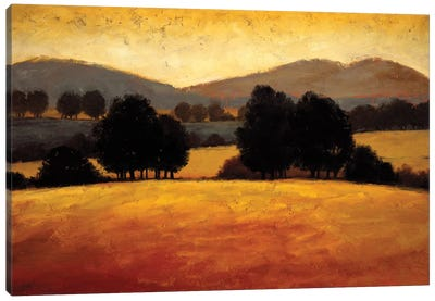 Santa Ynez II Canvas Art Print