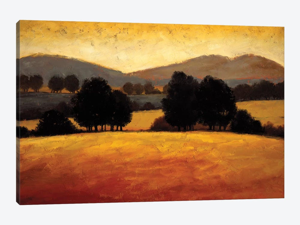 Santa Ynez II 1-piece Canvas Artwork