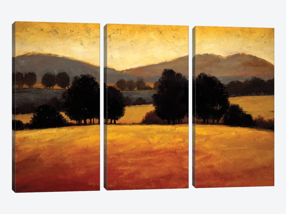 Santa Ynez II by Kevin Harris 3-piece Canvas Wall Art
