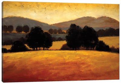 Santa Ynez II Canvas Art Print