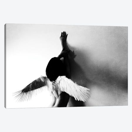 not fly 3-Piece Canvas #KEI1} by Keisuke Ikeda Canvas Artwork
