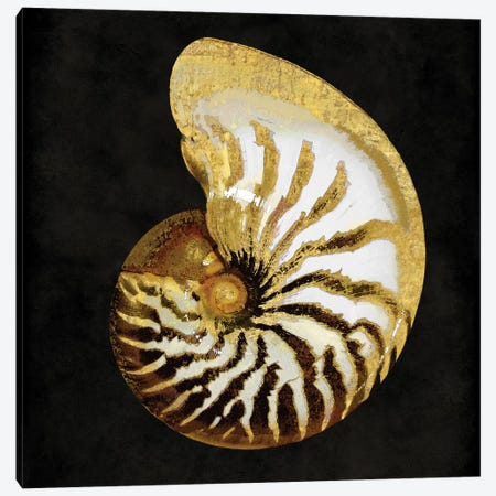 Golden Ocean Gems II Canvas Print #KEL12} by Caroline Kelly Canvas Print