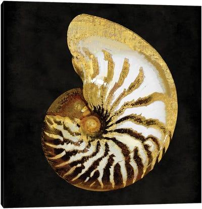 Golden Ocean Gems II Canvas Art Print