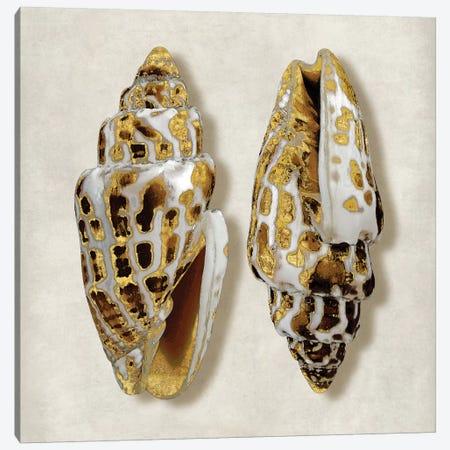 Golden Ocean Gems On Ivory I Canvas Print #KEL15} by Caroline Kelly Canvas Art