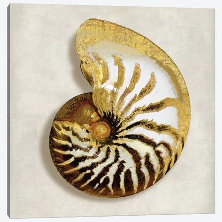 Golden Ocean Gems On Ivory II Canvas Print #KEL16} by Caroline Kelly Canvas Wall Art