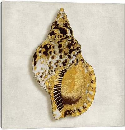 Golden Ocean Gems On Ivory III Canvas Art Print