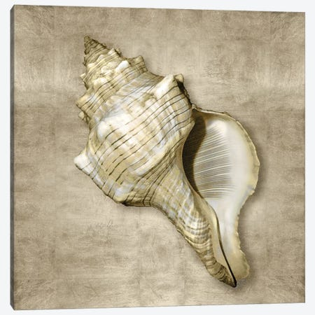 Golden Sea Life III Canvas Print #KEL21} by Caroline Kelly Canvas Artwork