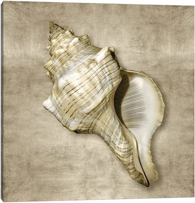 Golden Sea Life III Canvas Art Print