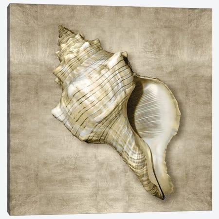 Golden Sea Life III Canvas Print #KEL21} by Caroline Kelly Canvas Artwork