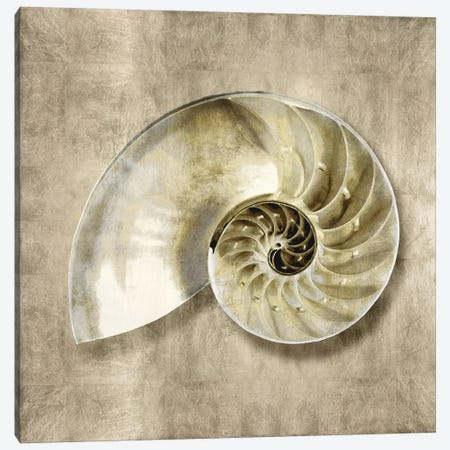 Golden Sea Life IV Canvas Print #KEL22} by Caroline Kelly Canvas Wall Art