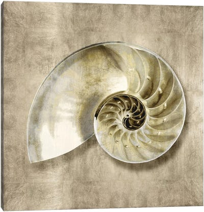 Golden Sea Life IV Canvas Art Print
