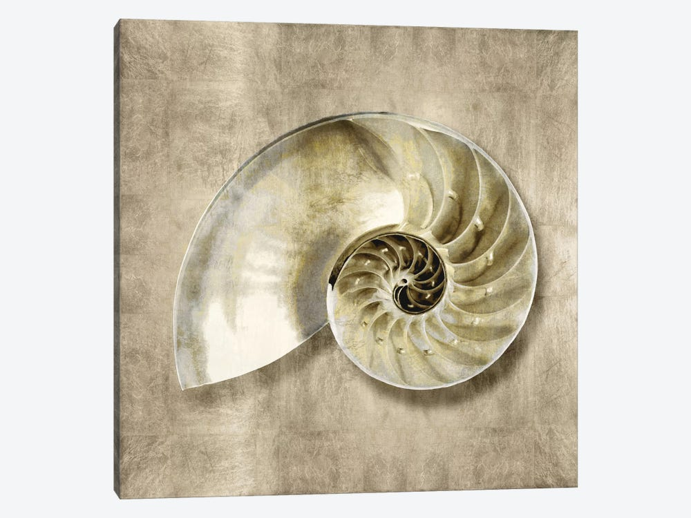 Golden Sea Life IV by Caroline Kelly 1-piece Canvas Artwork