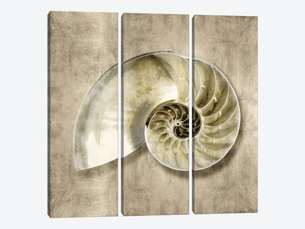 Golden Sea Life IV by Caroline Kelly 3-piece Canvas Artwork