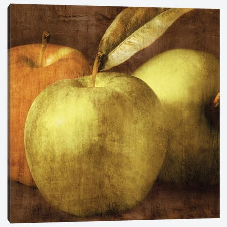 Apples Canvas Print #KEL2} by Caroline Kelly Canvas Print