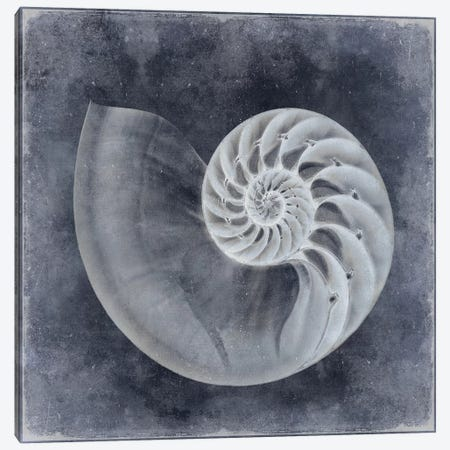 Ocean Blue IV Canvas Print #KEL33} by Caroline Kelly Canvas Art Print