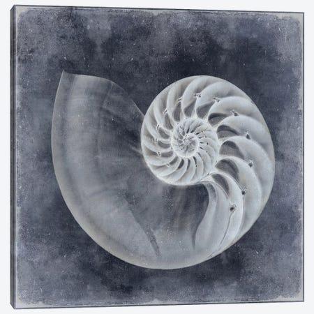 Ocean Blue IV 3-Piece Canvas #KEL33} by Caroline Kelly Canvas Art Print