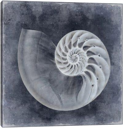 Ocean Blue IV Canvas Art Print
