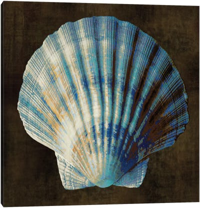 Ocean Treasure II Canvas Art Print