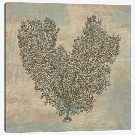 Aqua Fan Coral Canvas Print #KEL3} by Caroline Kelly Canvas Print