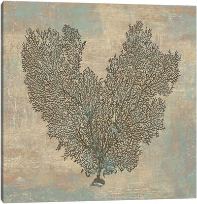 Aqua Fan Coral Canvas Print #KEL3