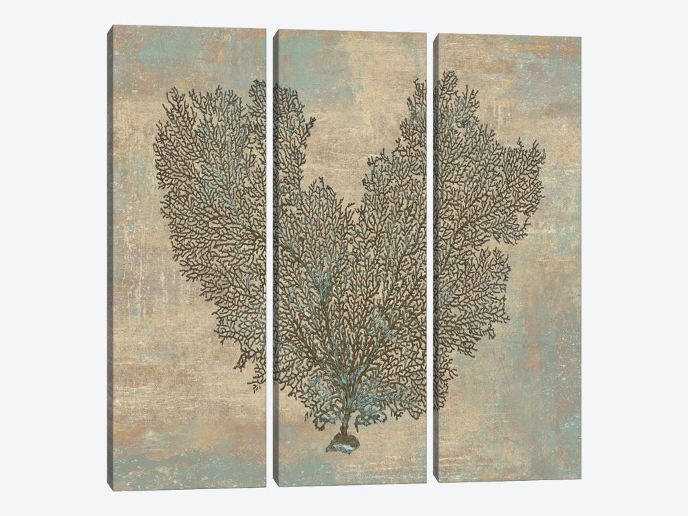 Aqua Fan Coral by Caroline Kelly 3-piece Canvas Art Print