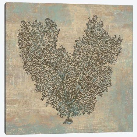 Aqua Fan Coral Canvas Print #KEL3} by Caroline Kelly Canvas Print