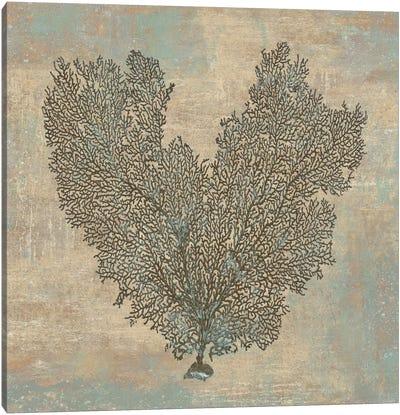Aqua Fan Coral Canvas Art Print