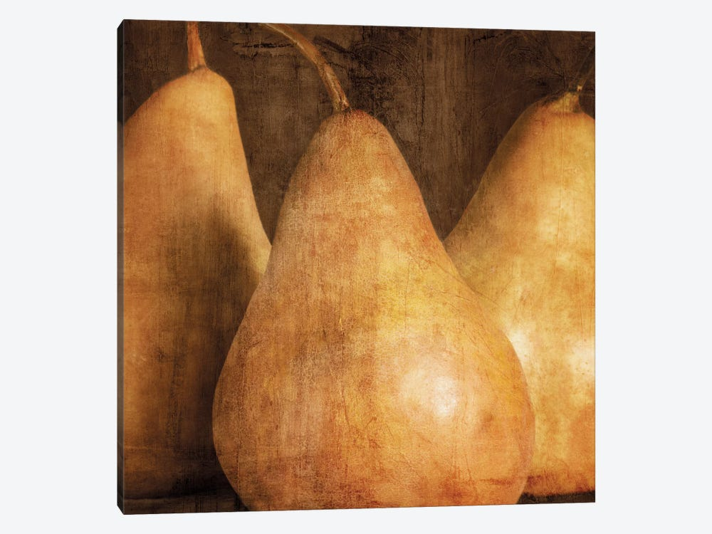 Pears by Caroline Kelly 1-piece Canvas Art