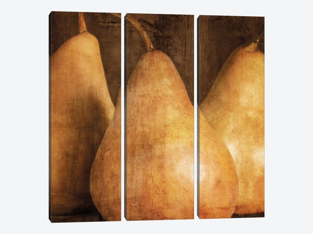 Pears by Caroline Kelly 3-piece Canvas Wall Art