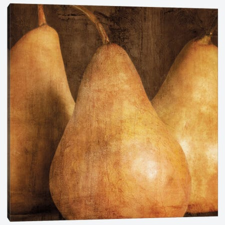 Pears Canvas Print #KEL42} by Caroline Kelly Canvas Art