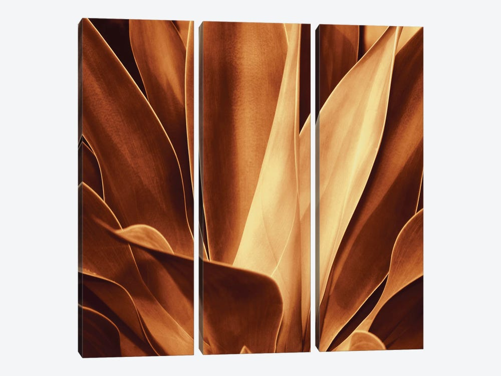 Santa Fe I by Caroline Kelly 3-piece Canvas Art Print